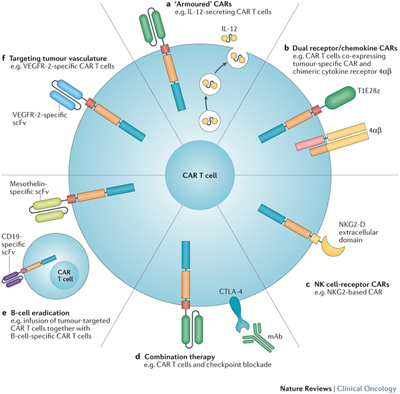 Car T Cells Nature Review